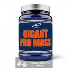 Pro nutrition Gigant Pro Mass 3000 g