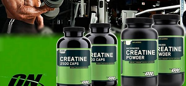 Optimum Nutrition Creatine 300 g